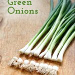 1649cb57d61ab1861dc9b5041d4ffaac-green-onions-growing-regrow-green-onions.jpgbt